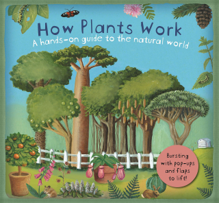 How Plants Work